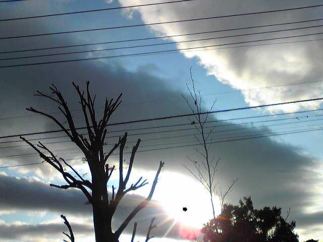 『白い雲のように』いつまでも・・・